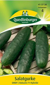 Quedlinburger Saatgut Freilandsalatgurke Sindy F1
