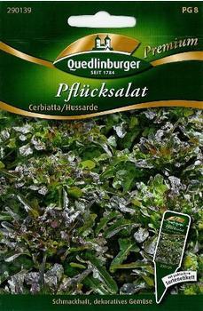 Quedlinburger Saatgut Pflücksalat Hussarde