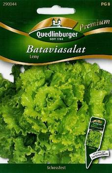 Quedlinburger Saatgut Bataviasalat Leny