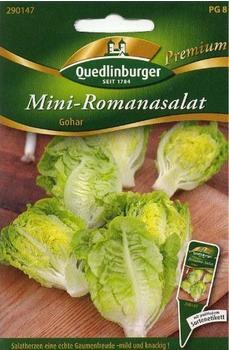 Quedlinburger Saatgut Mini-Romanasalat Gohar