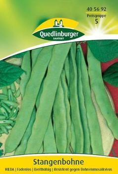 Quedlinburger Saatgut Stangenbohne Hilda