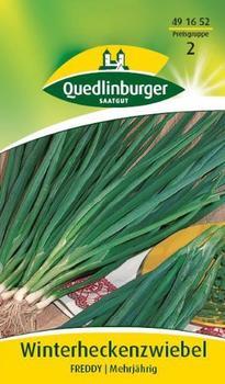 Quedlinburger Saatgut Zwiebel Winterhecken Freddy