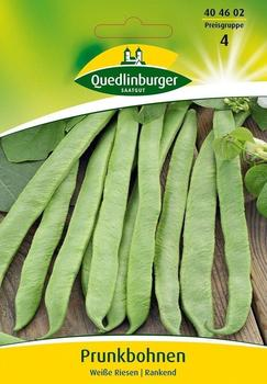 Quedlinburger Saatgut Prunkbohne Weiße Riesen
