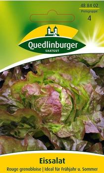 Quedlinburger Saatgut Eissalat Rouge Grenobloise