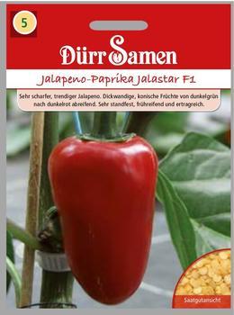 Dürr-Samen Jalapeno-Paprika Jalastar F1