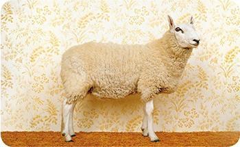 Ars Vivendi Brotzeitbrettchen »Schickes Schaf«