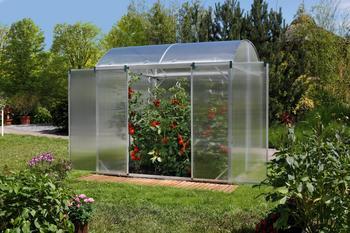 Beckmann GB 1 Tomaten-Gewächshaus