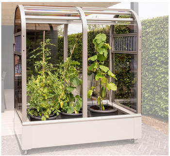 KGT Balkon-Terrassen-Gewächshaus Florence BS,