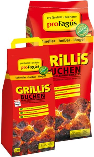 ProFagus Grillis Buchen Briketts 10 kg