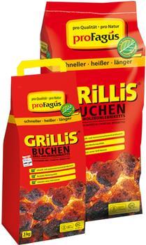 ProFagus Grillis Buchen Briketts 2,5 kg