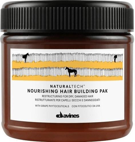 Davines Nourishing Hair Building Pak (250ml)