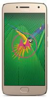Lenovo Motorola Moto G5 Plus 32GB gold