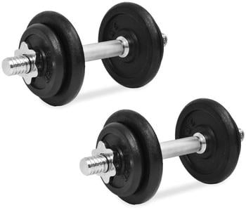 vidaXL Set of 2 cast iron dumbbells with weights