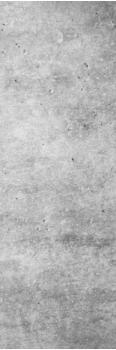 Papermoon Infrarotheizung »Premium DECOWATT«, Glas, 500 W, 40x120 cm, mit Funksteuerung und Thermostat grau
