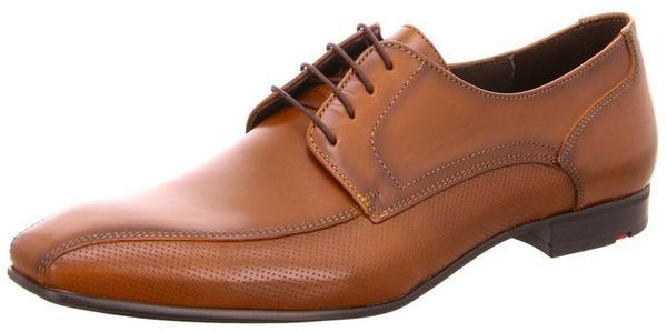 LLOYD Perth (16-160) brown