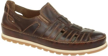 camel-active-point-15-45215-brown