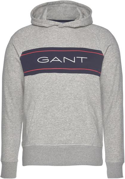 GANT Archive Hoodie grey (2007016-94)