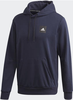 Adidas Must Haves Graphic Hoodie legend ink (FI4035)