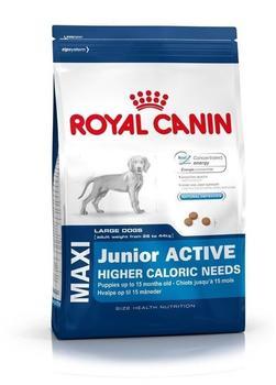 Royal Canin Maxi Junior Active (15kg)