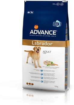 Affinity Advance Labrador Retriever (12 kg)