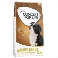 Concept for Life 1,5 kg Concept for Life Medium Junior