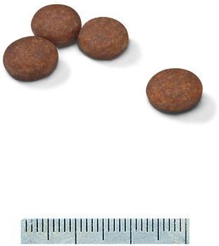 royal-canin-mini-digestive-care-1er-pack-1-x-4-kg