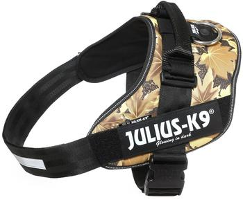 julius-k-9-idc-powergeschirr-3-autumn-touch
