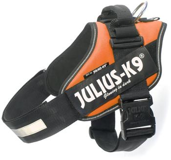 julius-k-9-idc-powergeschirr-2-orange