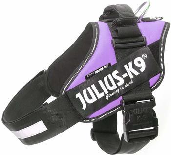 julius-k-9-idc-power-dog-harness-3-purple
