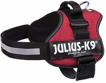 julius-k-9-idc-power-2-bordeaux