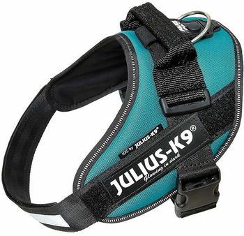 julius-k-9-harness-idc-power-0-petrol