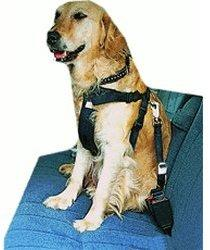 Trixie Sicherheitsgurt Dog Protect (Gr.M)