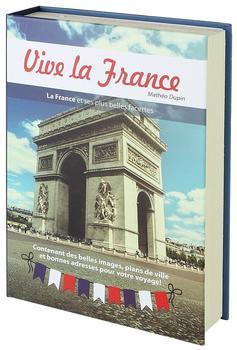 HMF 80925 Buchtresor Papierseiten Frankreich, 23 x 15 x 4 cm
