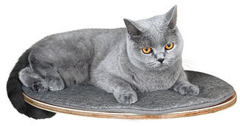 kerbl-wandliegebrett-tofana-oval-50x35cm-grau