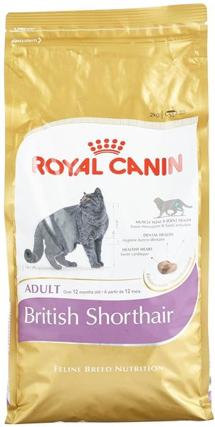 Royal Canin British Shorthair Adult (2 kg)