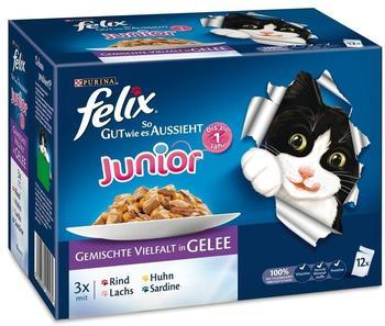 Felix So gut wie es aussieht Junior 6 x 12 x 100 g