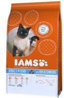 IAMS Pro Active Health Adult mit Meeresfisch