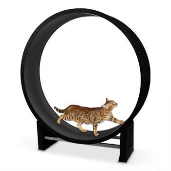 CanadianCat Katzenlaufrad Cat in Motion anthrazit