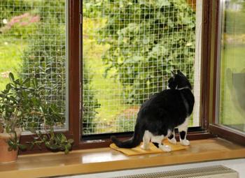 Silvio Design Katzen Sicherheitsnetz 2x2m weiß