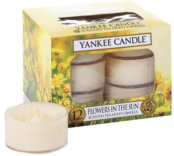 Yankee Candle Teelichte Kerzenwachs 8,4x6,1x8,4cm gelb (1351663E)