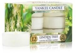 Yankee Candle Teelichter 12-Stk. Linden Tree 9,8g