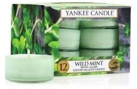 Yankee Candle Teelichter 12-Stk. Wild Mint 9,8g