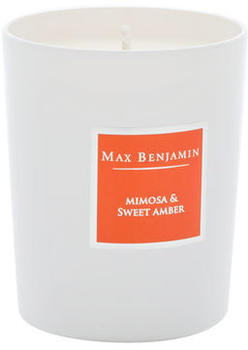 Max Benjamin Mimosa and Sweet Amber Scented Candle in Glass