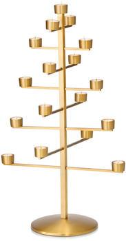 philippi-twig-80cm