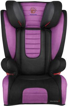diono-monterey-2-purple