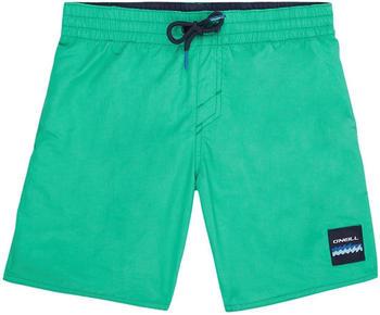 O'Neill Vert Shorts (0A3284) salina green