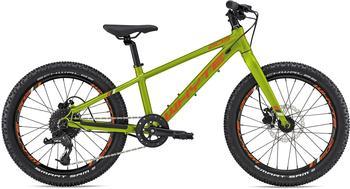 Whyte Bikes Kinderfahrrad 203V1 20 Zoll RH 28 cm olive
