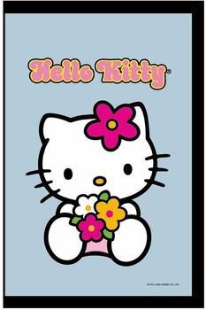 hello-kitty-spiegel-20-x-30-cm