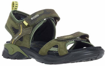 Ecco Biom Raft (700622) black/grape leaf