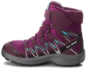 salomon-xa-pro-3d-winter-ts-cswp-j-dark-purple-potent-purple-atlantis